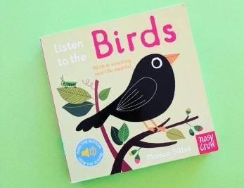 birds feature image