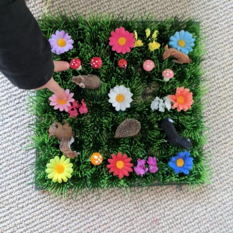 fairy grass.jpg